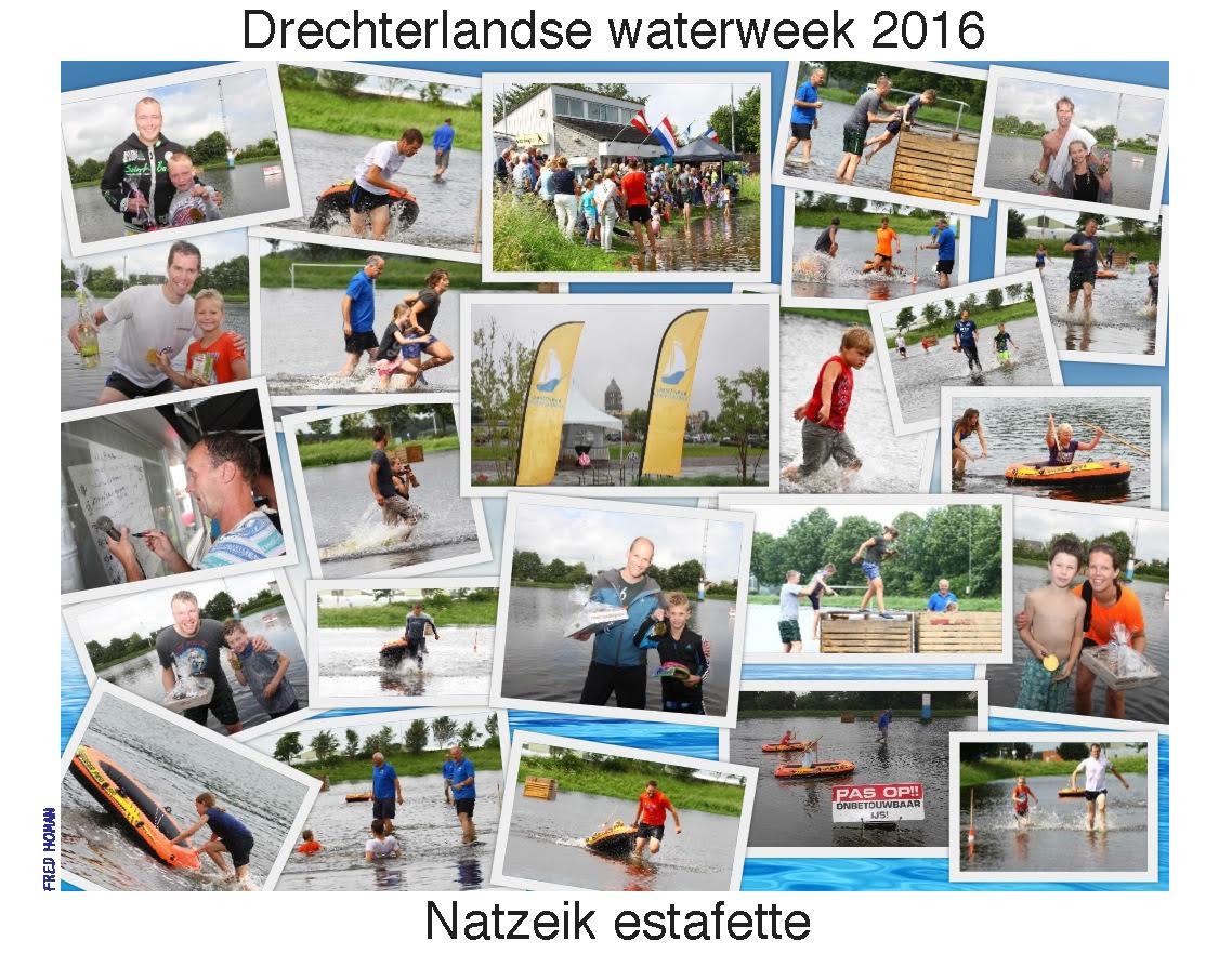 natzeik2016comp